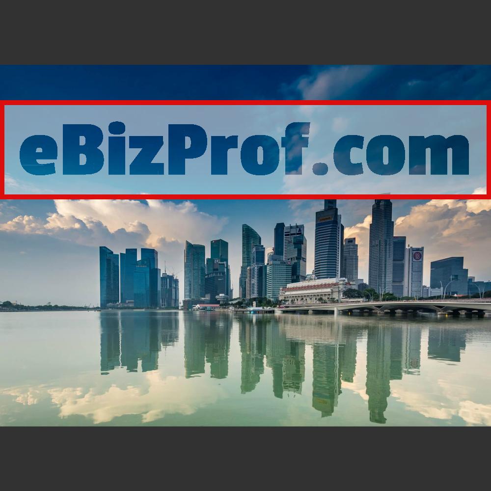 www.ebizprof.com city